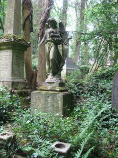 Overgrown Vines Around a Cemetery Angel Cemetery Monuments, Cemetery Statues, Cemetery Headstones, Old Cemeteries, Cemetery Art, Angel Statues, Highgate Cemetery, Graveyards, Cemetery Angels