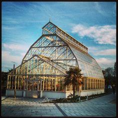 National Botanic Gardens in Dublin