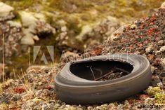 Old Tire – kaufen Sie dieses Foto und finden Sie ähnliche Bilder auf Adobe Stock | Adobe Stock Old Tires, Outdoor Decor, Photography, Home Decor, Pictures, Photograph, Decoration Home, Room Decor, Fotografie