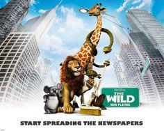 野生の、良い活発なpelicuala 映画 高解像度で壁紙