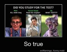 Ahahah its so true XD lolhilarious funny humor lexhaha joking lmfao epichumors haha crazy wacky funnypictures laugh lmao joke jokes silly laughing fun epic photooftheday Funny Relatable Memes, Funny Jokes, Funny School Quotes, Exam Funny Quotes, Funny Stories About School, High School Memes, School Jokes, True Memes, Funny Life