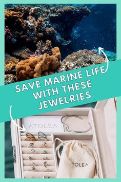 Every purchase of our ocean jewelries help save marine life! Be a part of this mission. Learn more about our advocacy at atoleajewelry.com