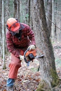 Chainsaws can be intimidating, but they don't have to be. Uncle Buzz walks us through using and operating a chainsaw safely.