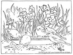 Google Image Result for http://catinkacards.tripod.com/coloring_pages/daffodils_birds_a.gif