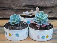 Reciclar y regalar: de latas a macetas {DIY Día del Amigo}: Vero Palazzo - Home Deco Tin Can Art, Tin Art, Home Crafts, Diy And Crafts, Crafts For Kids, Succulents Garden, Garden Pots, Vasos Vintage, Recycle Cans