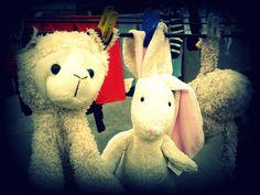 oveja conejo y oso en sonrisas