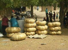 Calabash gourd vendor - Segou, Mali