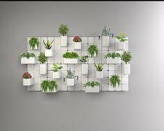 """""""KwiatIn"""" to modularny kwietnik ścienny zaprojektowany z myślą o rozwoju roślin. Zawiera trzy różne rozmiarowo osłonki na doniczki, które szynowo poruszają się po panelu ściennym. Dzięki suwaniu pojemnikami, możemy generować roślinie nowe przestrzenie dla…"""