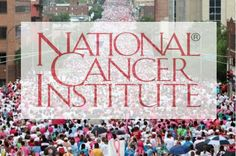 Y(^o^)Y A devastating new report commissioned by the National Cancer Institute reveals that our 40-year long 'War on Cancer' has been waged against a vastly misunderstood 'enemy,' that in many cases represented no threat to human health whatsoever.