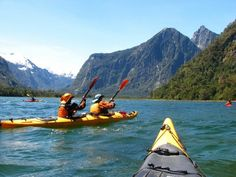 Sea kayaking -- a special treat would be a trip through the north Puget Sound islands. Fun!