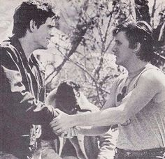Matt Dillon and Emilio Estevez