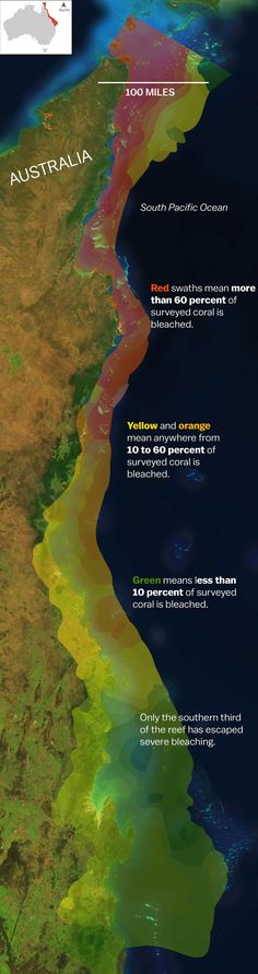 Map of coral bleaching incidents along the Great Barrier Reef