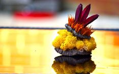 Welcome to the charming world of Coloured Whispers, where vivid splashes of colour are combined in order to create the most special dried flower bouquets. Dried Flower Arrangements, Flower Centerpieces, Table Centerpieces, Centrepieces, Dried Flower Bouquet, Dried Flowers, Moss Decor, Moss Art, Pub Decor