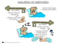Analgesia vs. Anesthesia