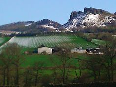 Staffordshire Winter