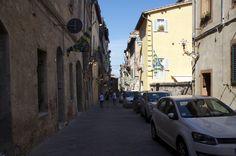 Siena 2 Luglio 2014 - Palio - contrada della Tartuca
