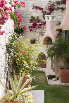 Gorgeous Mediterranean Garden In Crete With Its Typical House Architecture : Retreat To The Appealing Terracotta View Of A Mediterranean Garden With The Beauty Of Drought Tolerant Plant And Flowers