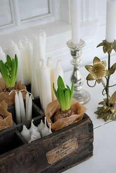 candles and bulbs in wood crate. definitely want to find an ornamental way to store my candles :-) Wood Crates, Wooden Boxes, Yule, White Christmas, Christmas Time, Vibeke Design, Christmas Interiors, Spring Bulbs, Deco Table