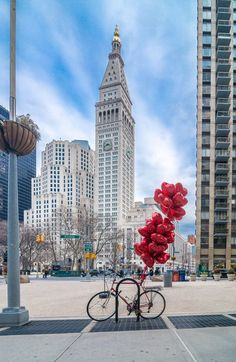love in new york. i'm creating opportunities to fall in love with someone new there. Central Park, Places Around The World, Oh The Places You'll Go, Around The Worlds, New York Pictures, New York Photos, Empire State Building, Travel Photographie, Spring In New York