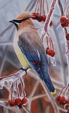 Cedar Waxwing - Bird painting by Darin Miller | Horizon Fine Art Gallery : Jackson Hole Art Gallery, Jackson, Wyoming