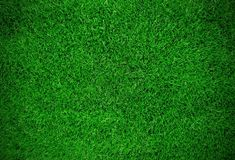 """"""" Description: """"This lush image will make you feel outdoors while indoors. Feel the turf underfoot and think of sports-filled days with the varying shades of Green on display. Green Grass Background, Fabric Backdrop, Sports Images, Wall Treatments, Photography Backdrops, Shades Of Green, Wall Murals, Stock Photos, Prints"""