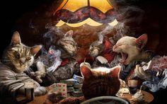 Secret life of cats.