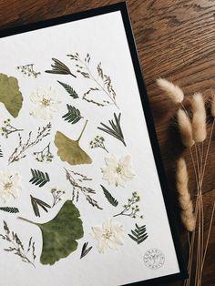Ginkgo et fougère dans un herbier d'automne - Ginkgo & fern in a fall herbarium Botanical Wall Art, Botanical Drawings, Linden Gardens, Diy Fleur, Photo Deco, Pressed Flower Art, Plant Art, Nature Crafts, Floral Wall