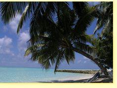 Alimatha Aquatic Resort - Maldives
