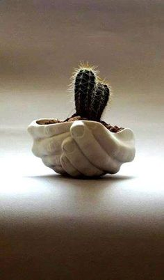 Porcelain planter - Folded Hands / Ceramics and Pottery / Handmade by SCULPTUREinDESIGN / White color / Decor & Housewares / Funny gift on Etsy, kr Hand Planters, Ceramic Planters, Indoor Planters, Planter Pots, Indoor Outdoor, Vertical Planter, Cactus Plante, Pot Plante, Ceramic Pottery