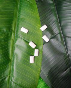 Purkka ei maadu luonnossa, vaan on vaarana niin ympäristölle kuin eläimillekin. Lajittele purkka aina sekajätteisiin luontoon heittämisen sijaan tai vaihda ksylitolipastilleihin. Picture: chewing gum on a banana tree leaf Hampi, Tie Clip, Tie Pin