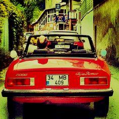 Alfa Romeo Spider Duetto  Automanas  Pinterest  Alfa romeo