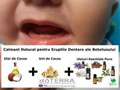 Dentitia de lapte. cuvantul in sine poate creste nivelu de stres al parintiilor. Stitati ca ii puteti ajuta utilizand uleiuri esentiale pure pentru ameliorarea dureriilor cauzate de dentitie. Unele uleiuri esentiale ajuta la calmarea dureriilor de dentitie la sugari dar si la adolescenti pe care le puteti folosii fara sa va temeti de sanatatea copilului dumneavoastra.