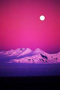 ✯ Purple Days