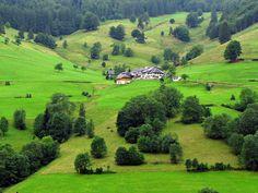 La Selva Negra en Alemania es una de las mejores maravillas naturales