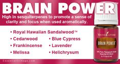 Brain Power essential oil blend from Young Living Essential Oils Guide, Natural Essential Oils, Essential Oil Blends, Young Living Oils, Young Living Essential Oils, Brain Power Young Living, Young Living Cedarwood, Natural Healing, Essentials