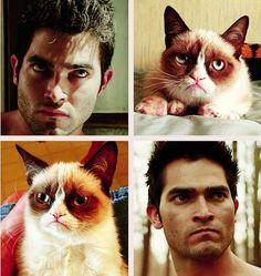 hahahahah tyler hoechlin from teen wolf is the grumpy cat!!