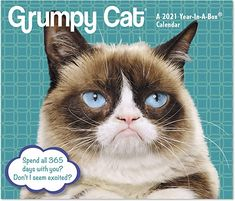 Filled with a year's worth of grouchy face, epic frowns, crabby quotes and meowvalous cranky commentary from this internet sensation, spend your year with the cat that always looks annoyed. Features print that's large enough to read without having to put on your glasses, a cute, adorable, sweet, Grumpy Cat calendar. The perfect gift for anyone charmed by this sourpuss, whether it's for the first or hundredth time. #cats #catlovers #calendar2021 #humor #funny #calendars Irritated Quotes, Funny Calendars, Dry Erase Wall Calendar, Cat Calendar, Cat Years, Morning Show, Bad Cats, American Idol, Grumpy Cat