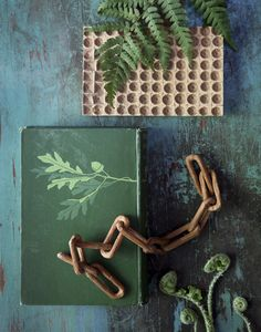 groen | green | vert | grün | verde | 緑 | color | colour | texture | style | form | Pat Bates - Seth Smoot