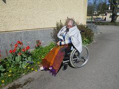 Kevään kukkaloistoa ihastelemassa.