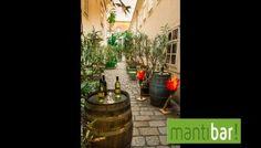 Galerie - mantibar! Plants, Painting, Art, Painting Art, Flora, Paintings, Kunst, Plant, Paint