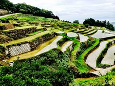 Rice Terraces at Minami Shimabara. by Hiro Sasaki, via Flickr
