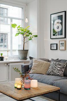 Ein helles Zimmer, wo ein hölzerner Tisch, schöne Kissen und eine einzige Pflanze die Hauptrolle spielen