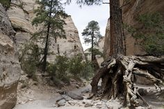 """Land Of Enchantment - Slot Canyon II Go to http://iBoatCity.com and use code PINTEREST for free shipping on your first order! (Lower 48 USA Only). Sign up for our email newsletter to get your free guide: """"Boat Buyer's Guide for Beginners."""""""