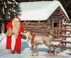 Der Weihnachtsmann füttert sein Rentier im finnischen Lappland.