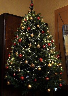 Kupte si tuto krásu v předstihu za super cenu 🎄  Zde: www.mujstromecek.cz  #vanoce #ceskarepublika #vanocnistromek #vanocnistromecek #vanocnistrom #vánočnístromeček #kup #czechrepublic #ostrava Christmas Tree, Holiday Decor, Home Decor, Trees, Teal Christmas Tree, Homemade Home Decor, Xmas Trees, Interior Design, Christmas Trees