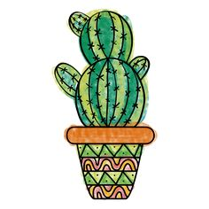 Hand drawn colorful multiple cactus pot png
