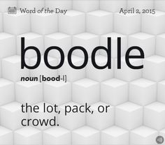 Boodle (n) ..the lot, pack, or crowd