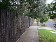 Tea-tree as a fence material for privacy to a front yard.