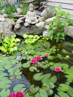 100 Fresh Backyard Ponds and Water Garden Landscaping Ideas - InsideDecor Small Water Gardens, Small Backyard Gardens, Ponds Backyard, Outdoor Gardens, Garden Ponds, Garden Water, Lotus Pond, Water Features In The Garden, My Secret Garden