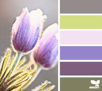 Binnenkant : Een eigen kleurenpalet kiezen...